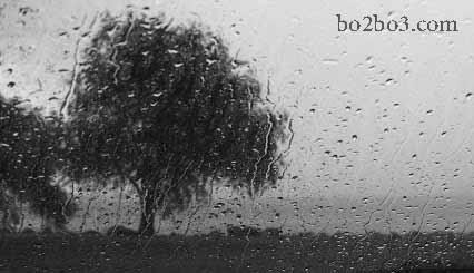 کاش باران بگیرد