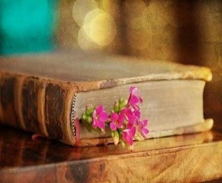 گل لای کتاب